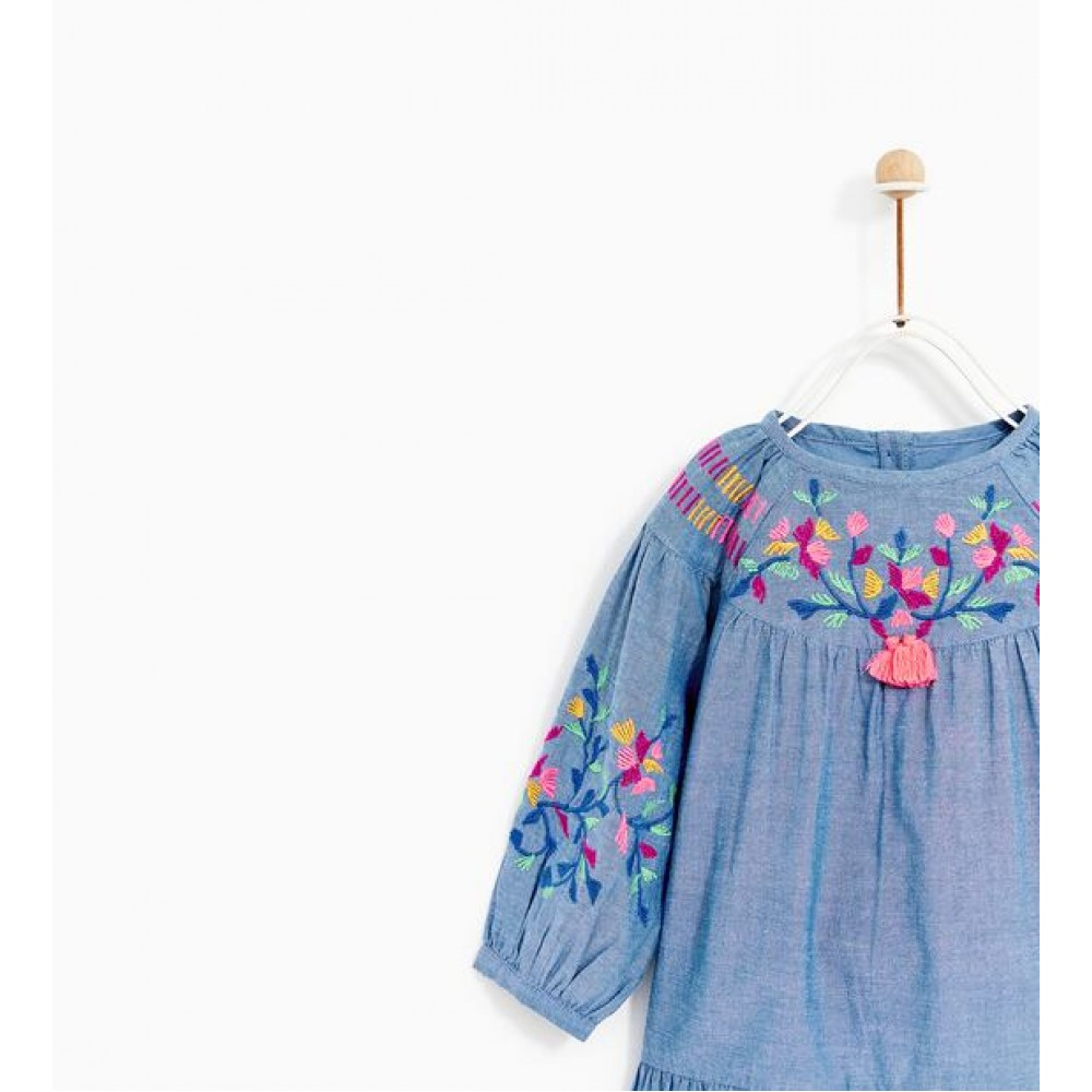 Zara Chambray Embroidered Dress