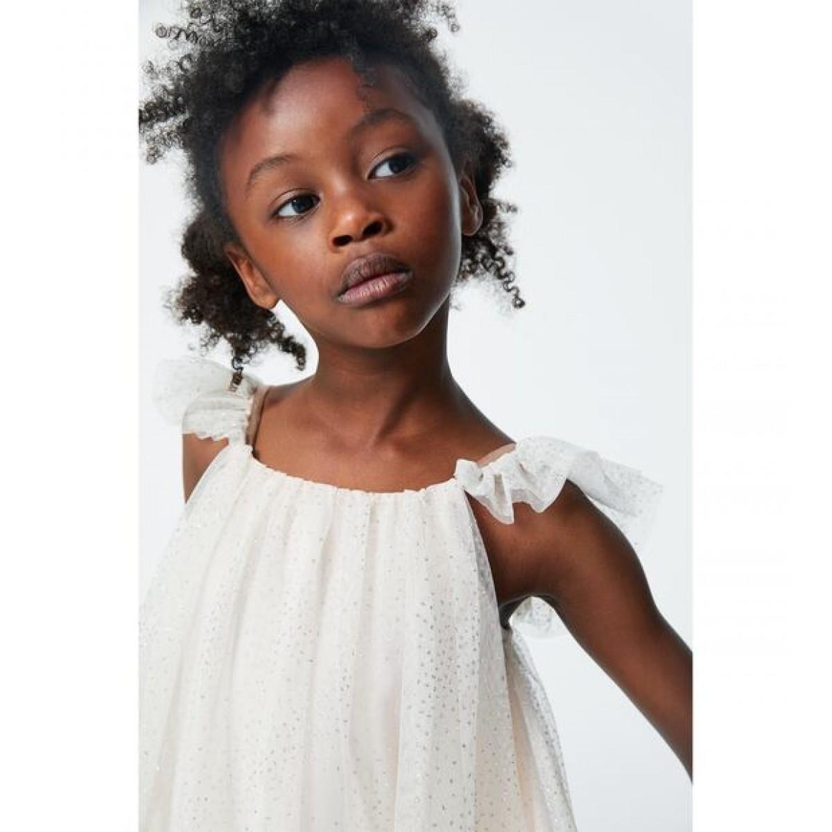 Zara Shiny Tulle Dress