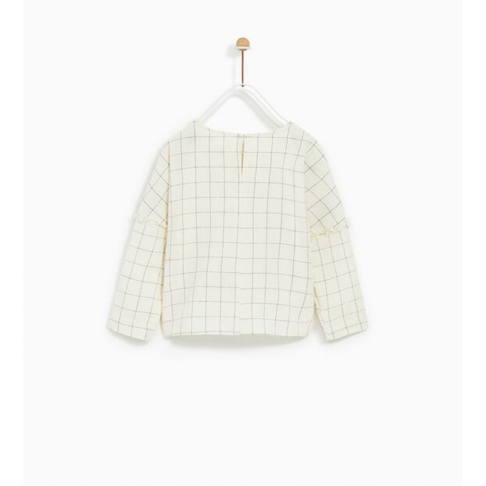 Zara Window Pane Check Shirt With Embroideries