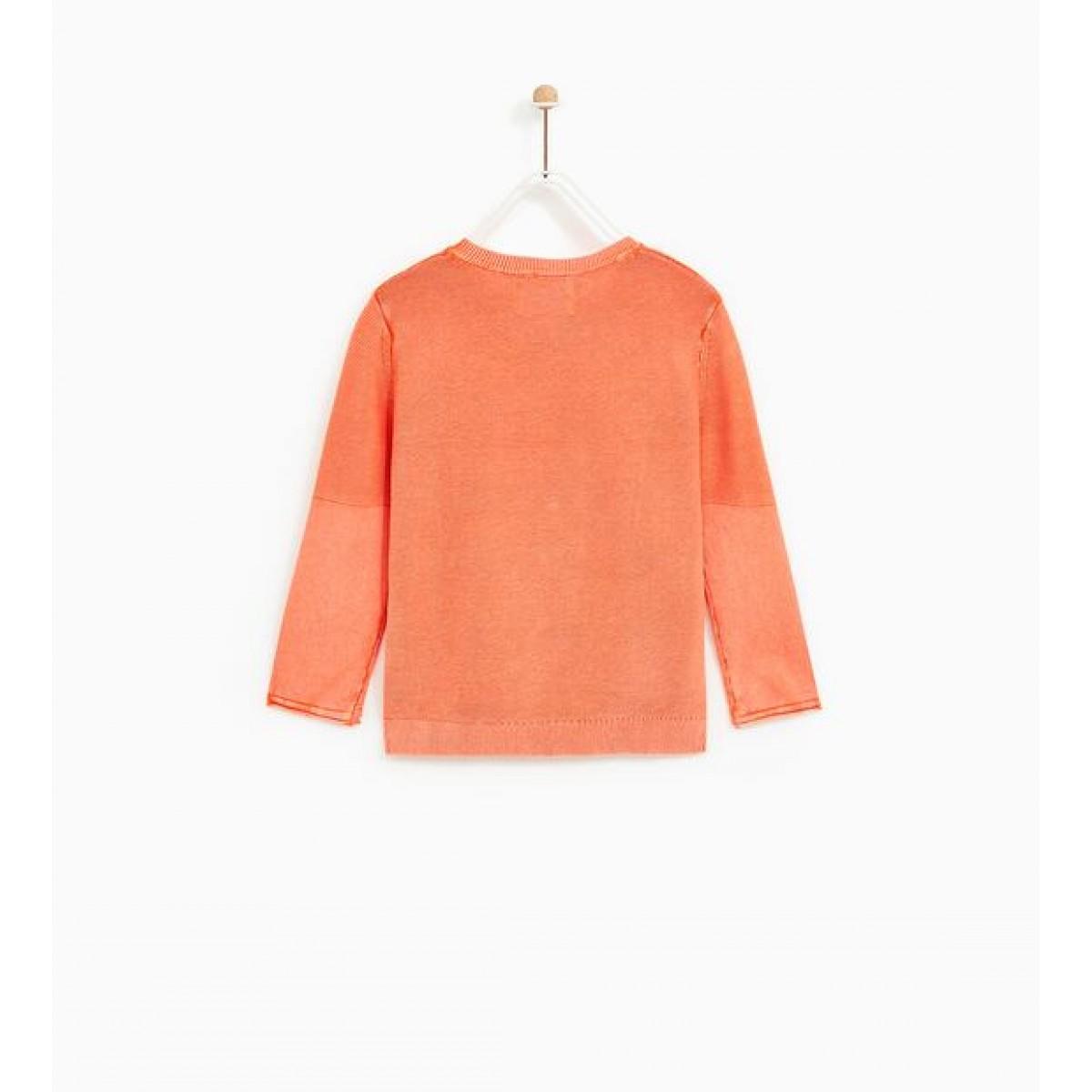 Zara Sweater With Rubberised Print