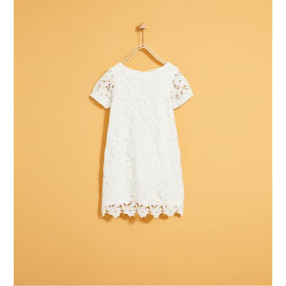 Zara Guipure Lace Dress
